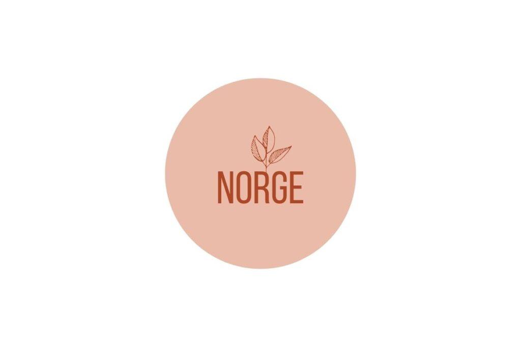 Illustrasjon: Recovery i Norge